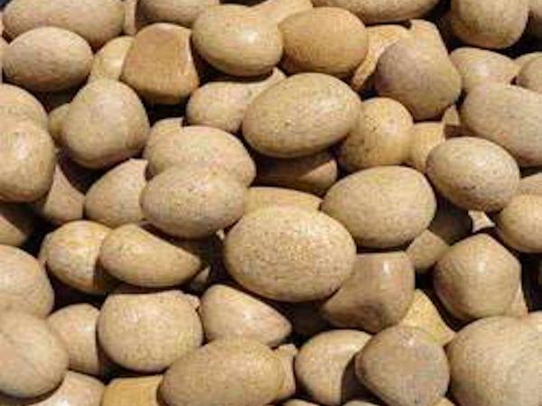beige pebbles decorative stones